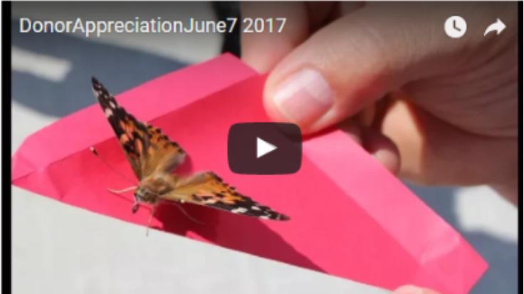 Donor Appreciation Event Slideshow Thumb